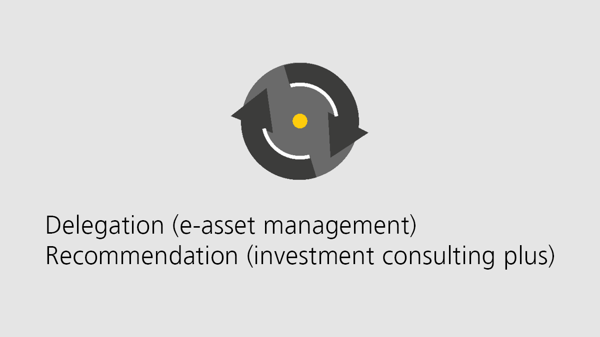 Delegation (e-asset management) / Recommendation (investment consulting plus)