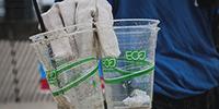 Was ist Greenwashing? 5 Hinweise, mit denen Sie Greenwashing erkennen können