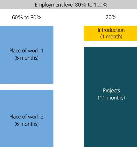 Employment level 80% to 100% 60% to 80% Place of work 1 and 2 (6 month each) 20% Projects (Introduction 1 month, projects 11 month)